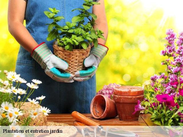 entretien jardin escalquens