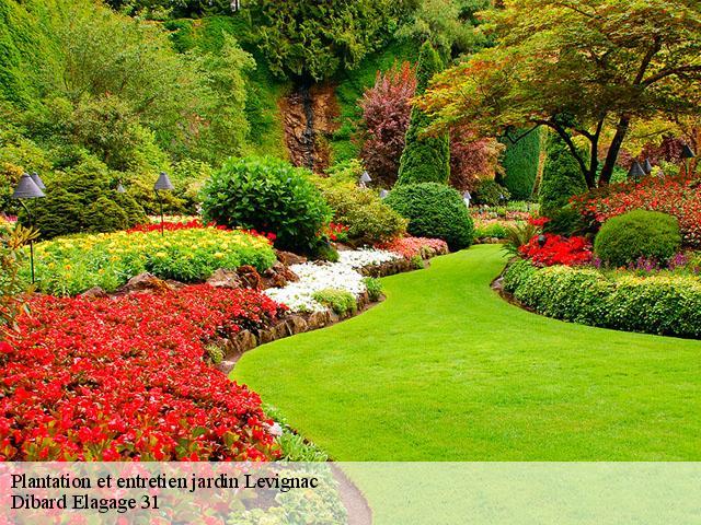 Entretien de jardin à Levignac tél: 05 19 65 10 93